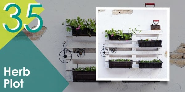 More pallet organisation ideas for your plants coming through...