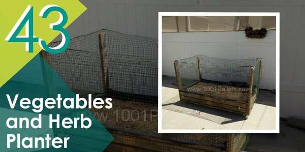 Vegetables and Herb Planter