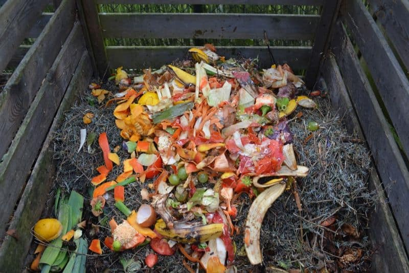 transform-garden-wildlife-haven-5-compost-bins-pixabay