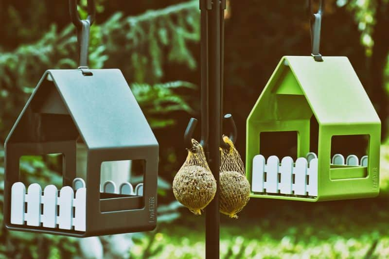 transform-garden-wildlife-haven-6-feed-the-birds-feed-the-birds
