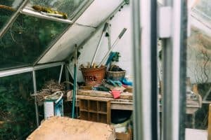 How To Make Your Garden Shed Eco-Friendly