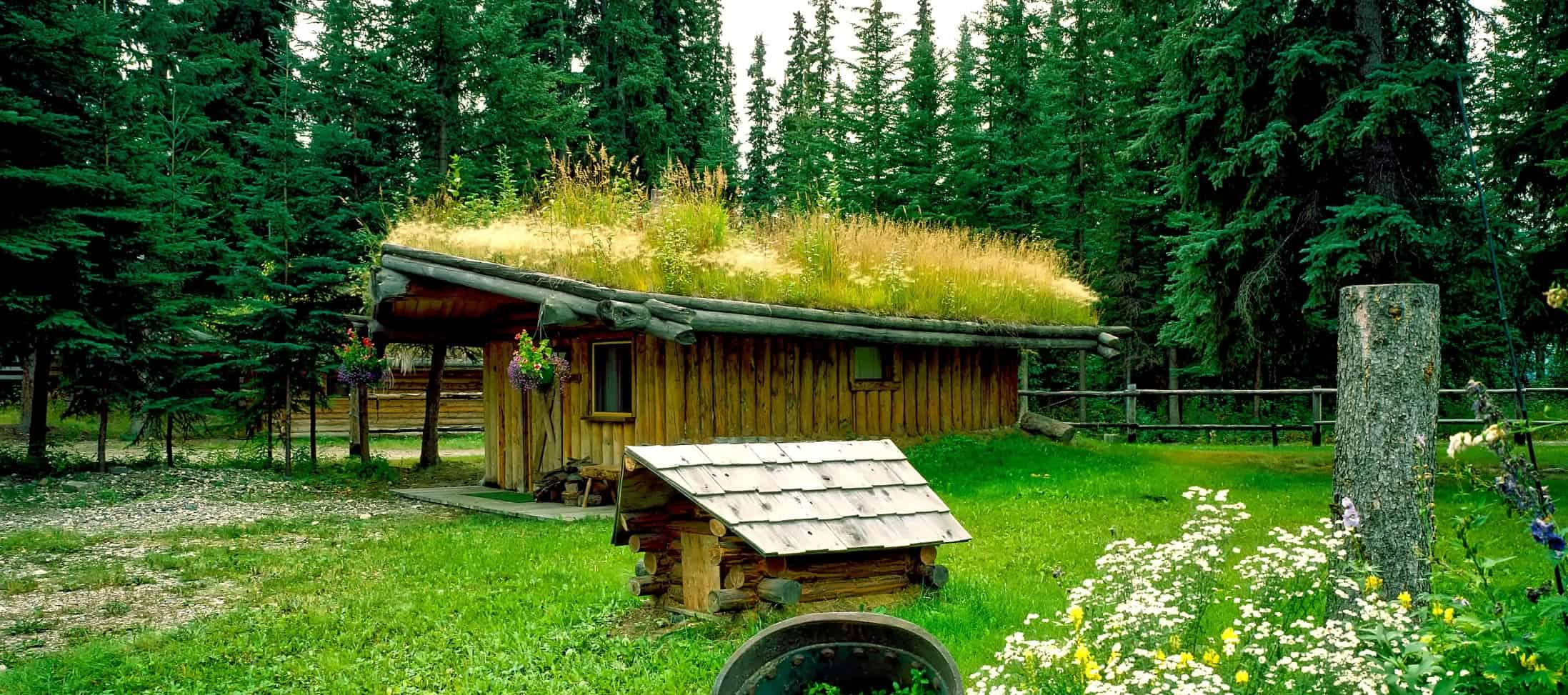 eco-friendly-shed-5-roof-garden