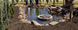 attract-dragonflies-to-garden-1-build-a-pond