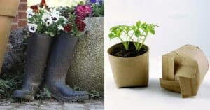 12 Clever Gardening Ideas on Low Budget