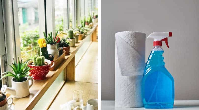 12-genius-gardening-hacks-05-self-watering-system