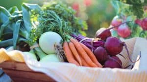 gardening-significant-health-benefits-improves-your-diet