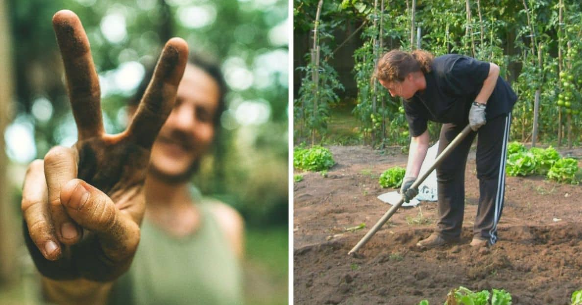 gardening-significant-health-benefits