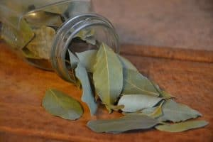 natural-ways-get-rid-of-rats-6-bay-leaf