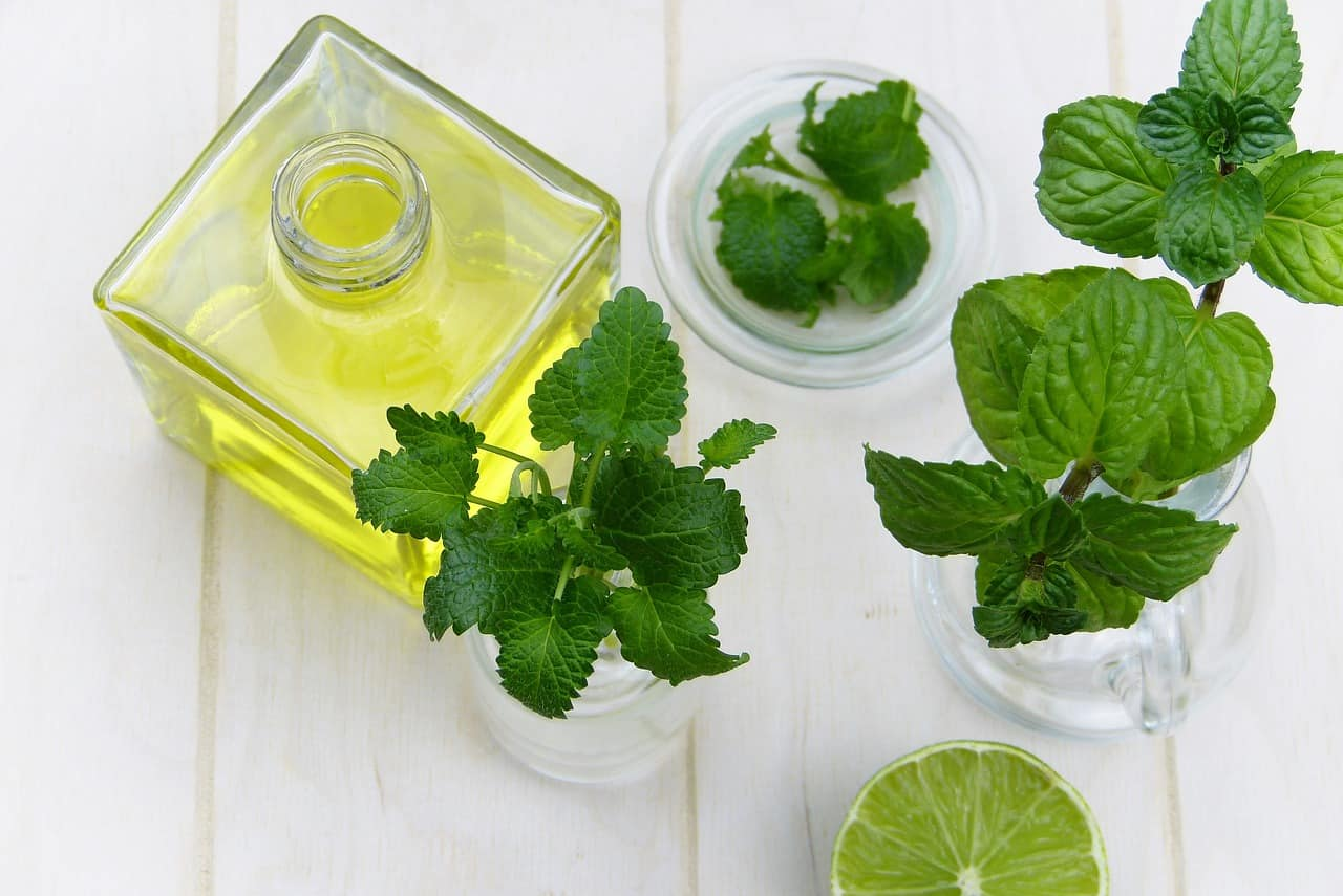 bite-and-sting-relief-6-peppermint-oil