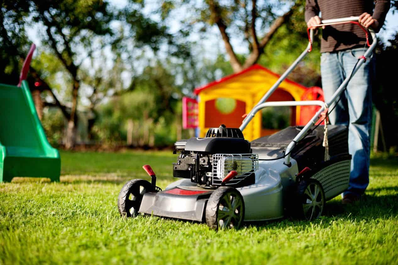 how-to-revive-a-lawn-autumn-3-mower-blades
