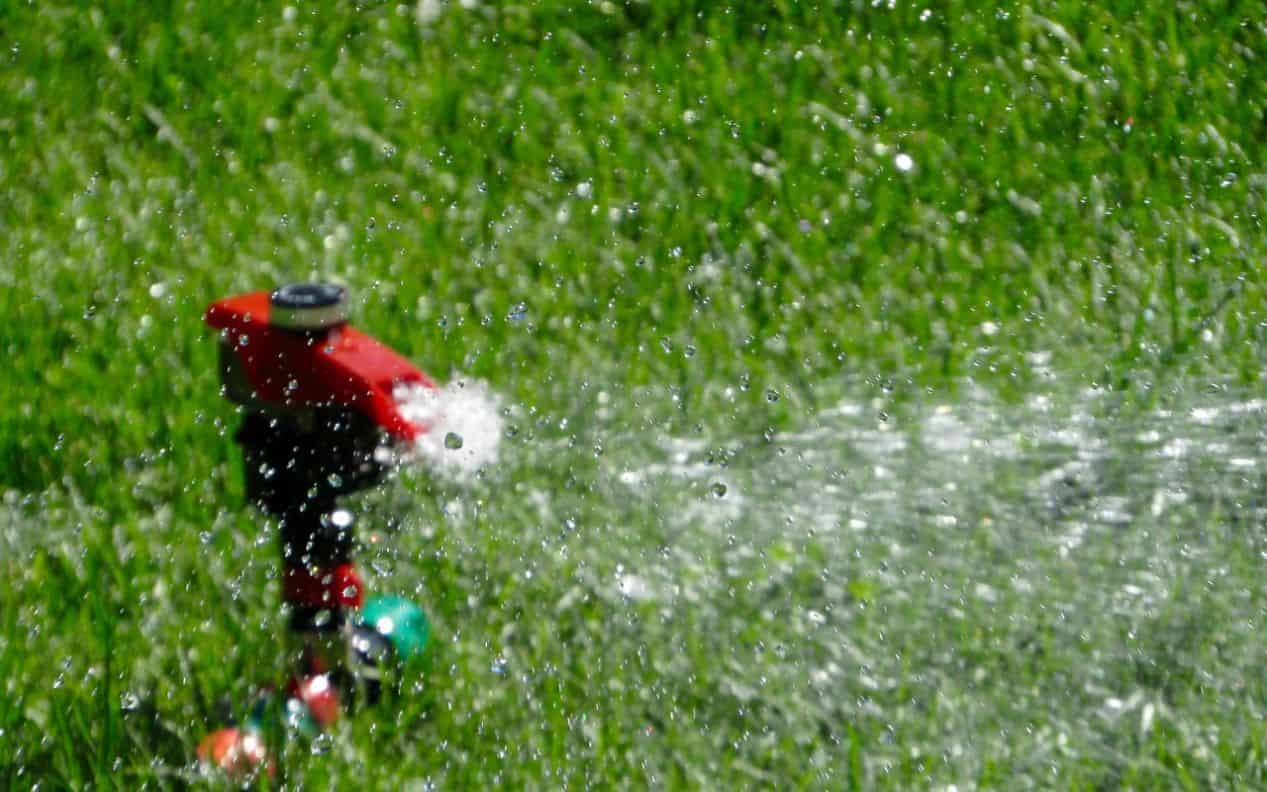 how-to-revive-a-lawn-autumn-7-water
