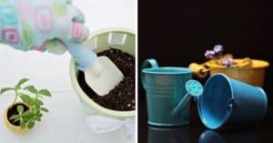 reduce-plastic-use-garden