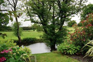 garden-pond-maintenance-2-water-levels