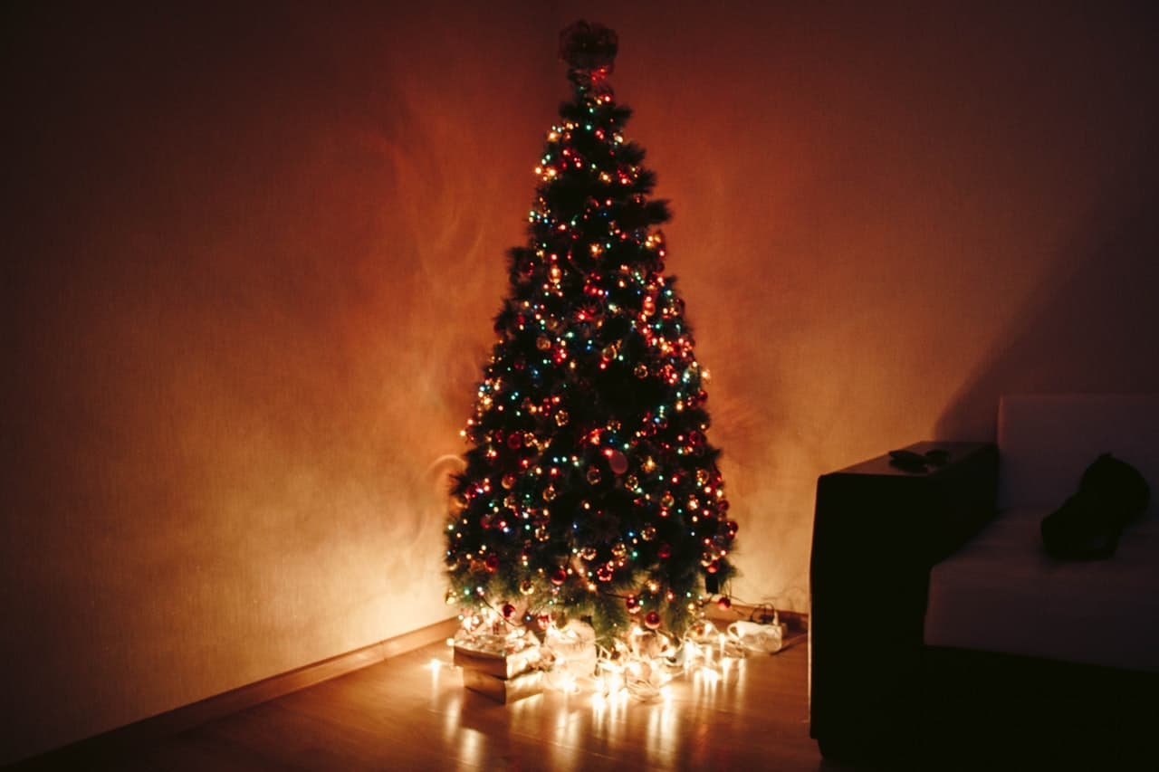 tips-buying-a-Christmas-tree-3-pick-the-right-height-for-your-home