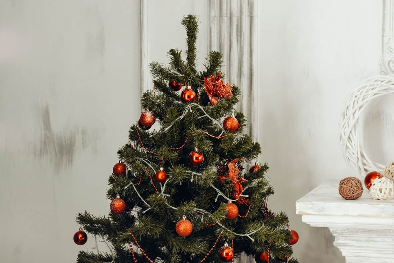tips-buying-a-Christmas-tree-5-determine-the-best-location-for-your-tree