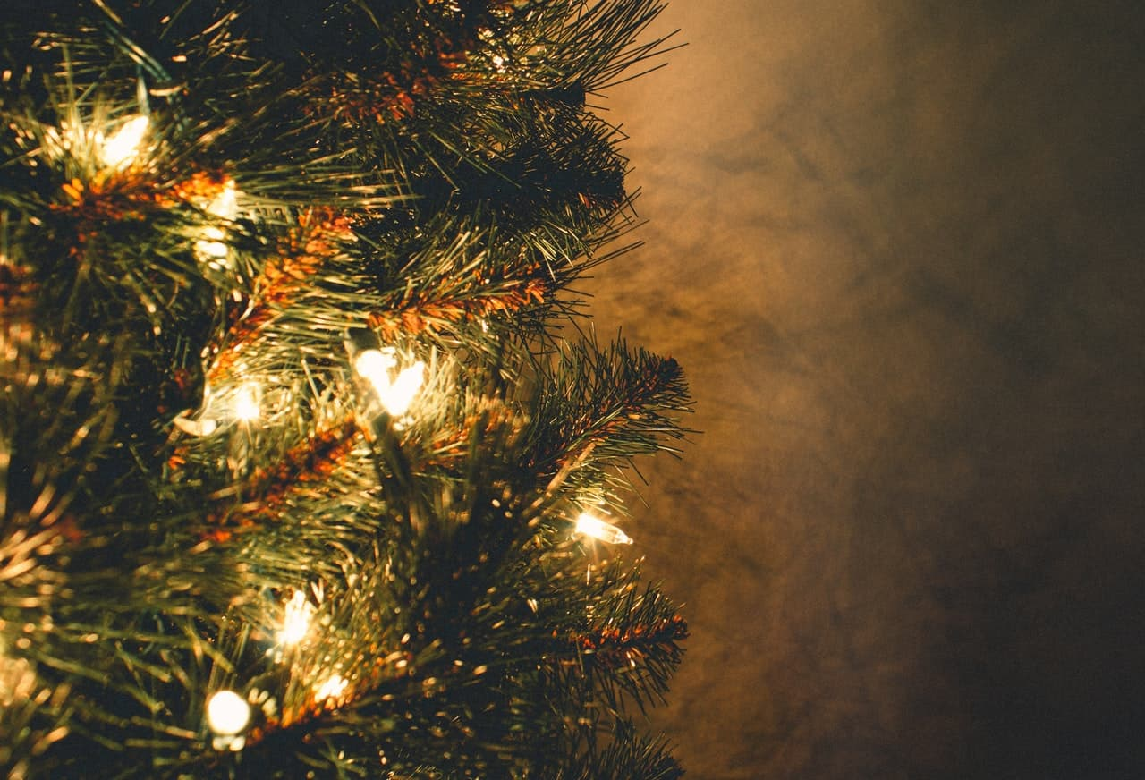 tips-buying-a-Christmas-tree-7-trim-any-crooked-branches