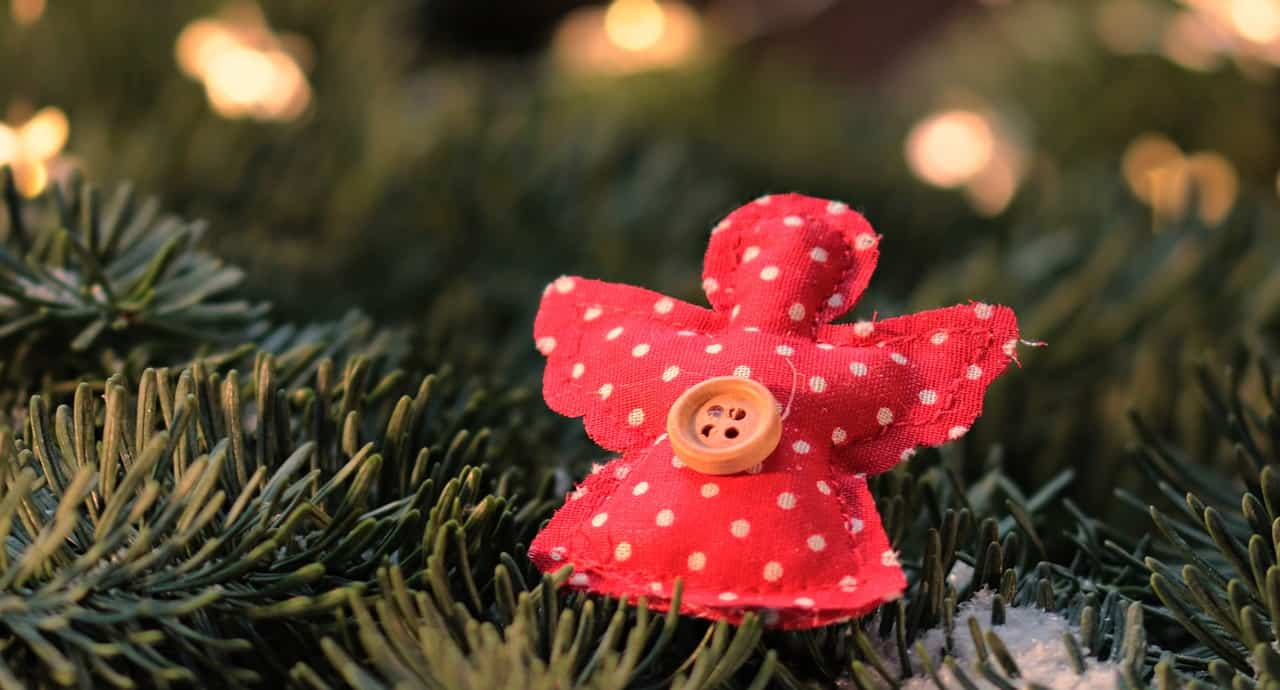 tips-buying-a-Christmas-tree-9-maintain-the-trees-moisture