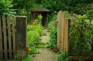 ultimate-guide-to-wildlife-friendly-garden-3-create-your-own-garden-wildlife-shed
