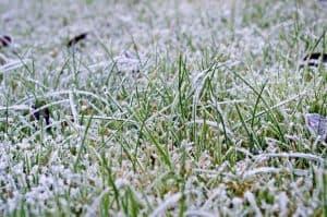 annoying-winter-disadvantages-4-slushy-snow