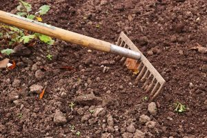 ways-to-prepare-your-garden-for-spring-1-tidy-up
