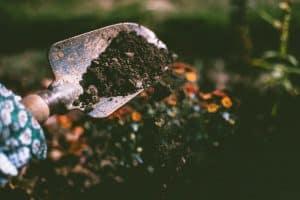 ways-to-prepare-your-garden-for-spring-5-soil