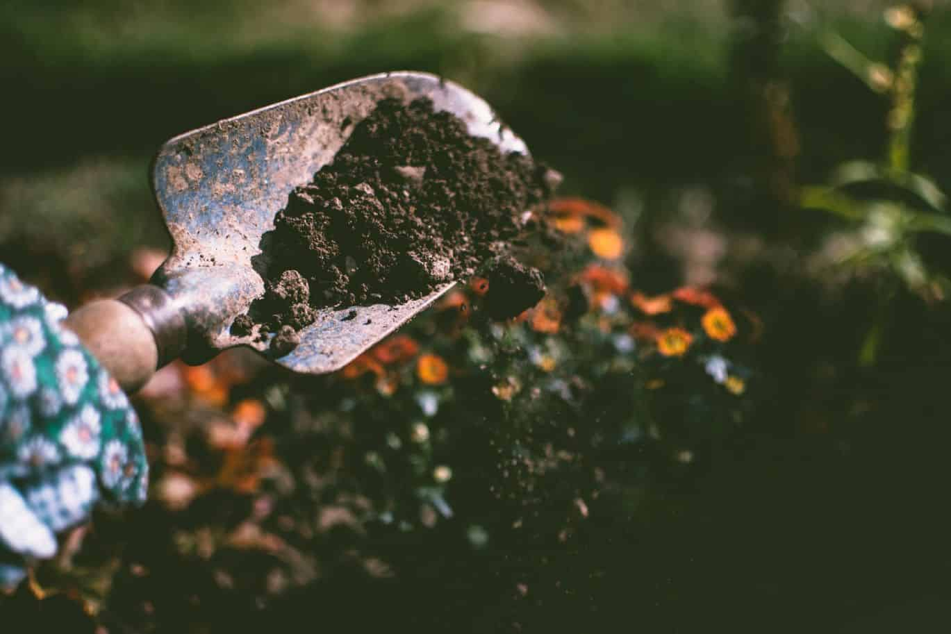 ways-to-prepare-your-garden-for-spring-5-soil