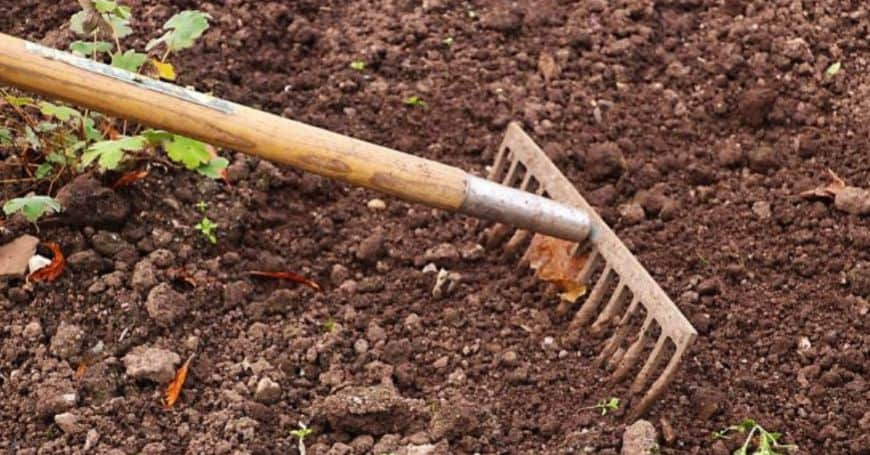 ways-to-prepare-your-garden-for-spring