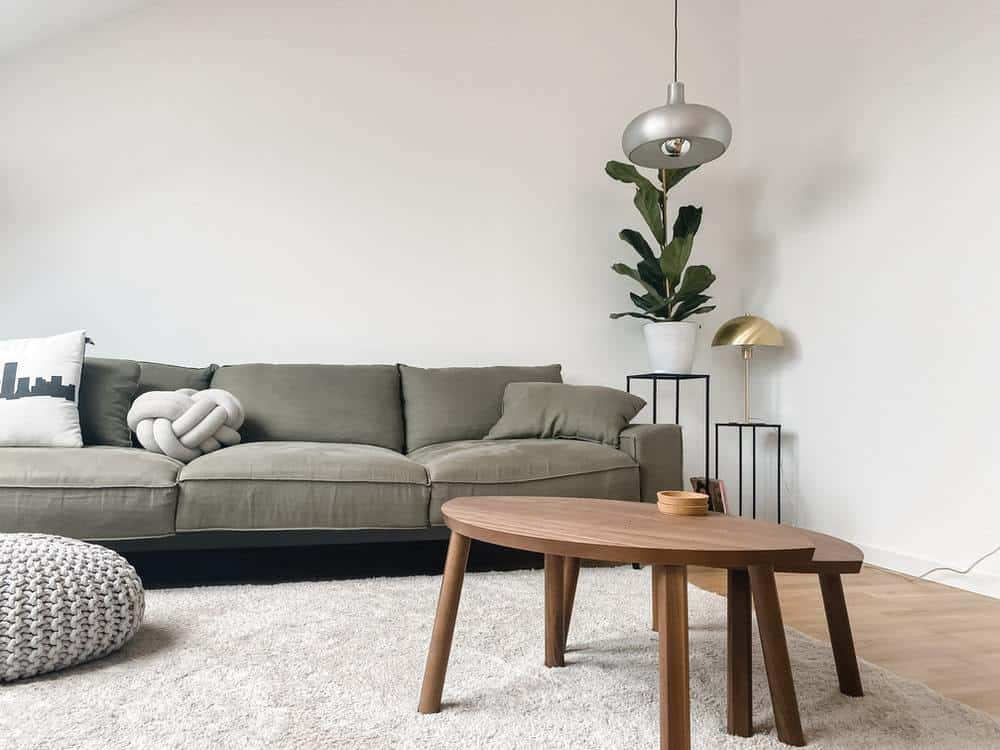 Simple toned living room