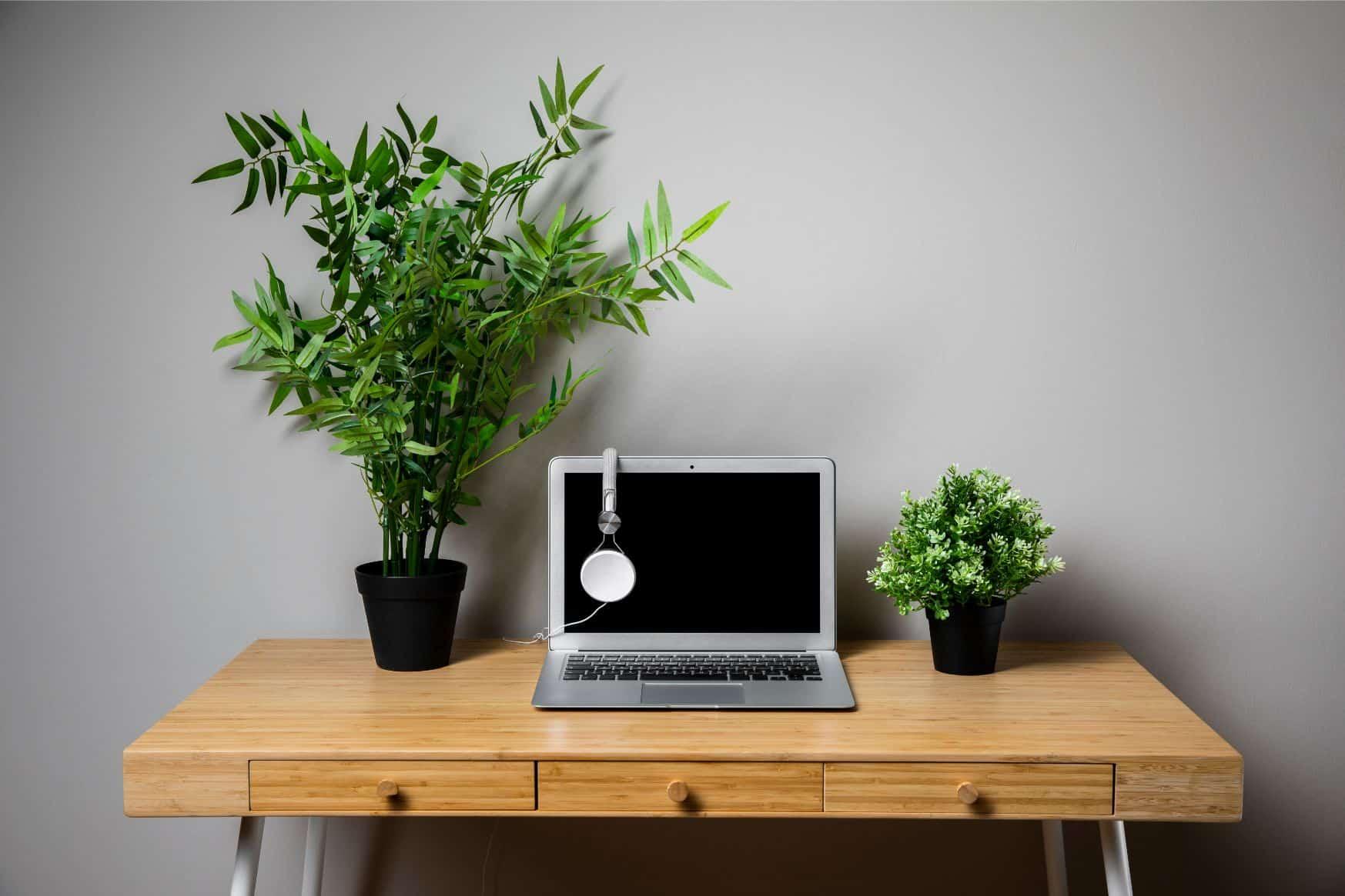 garden-home-office-essentials-5-greenery-freepik