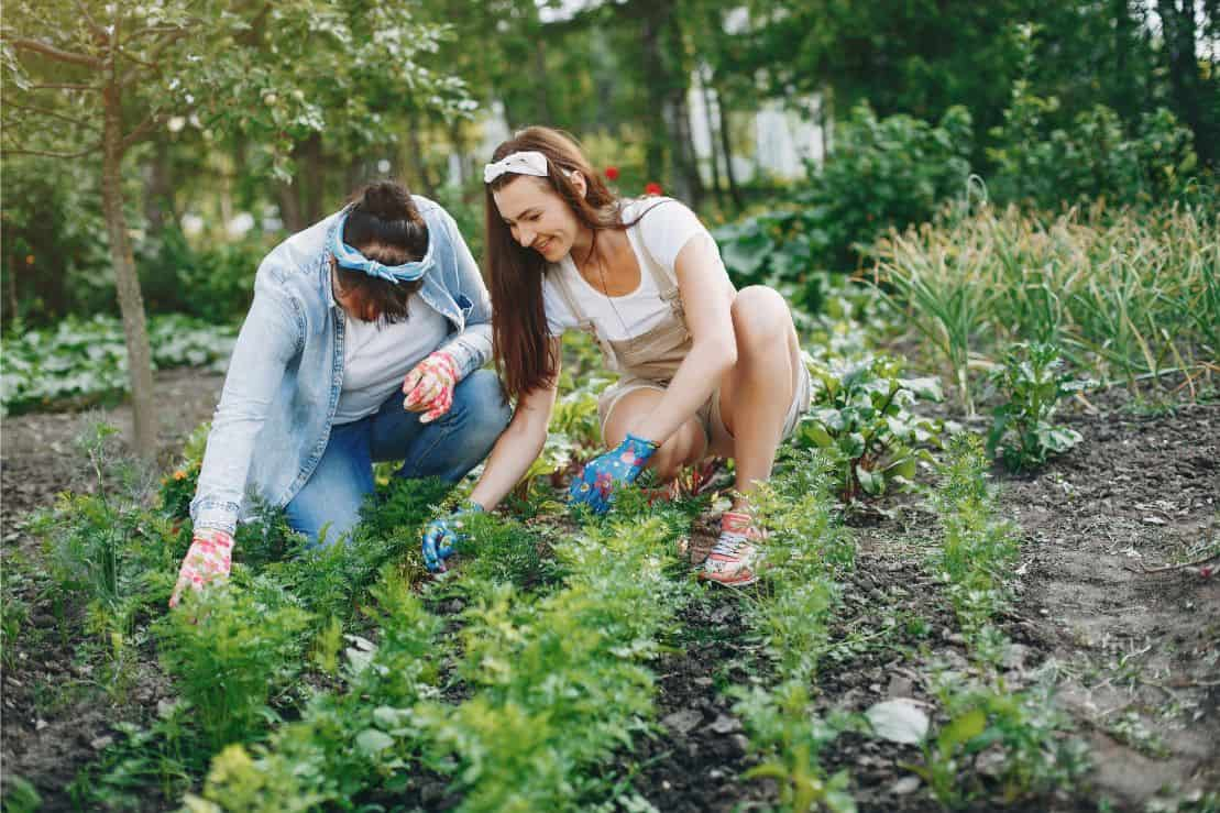 new-years-resolutions-for-gardeners-5-join-a-club-freepik