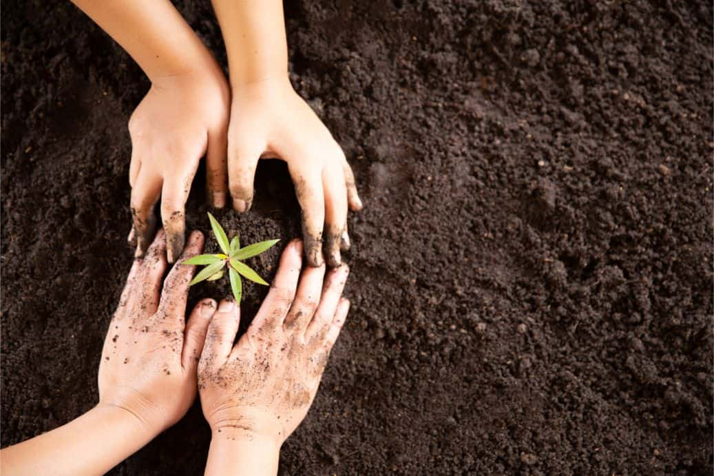 new-years-resolutions-for-gardeners-6-plant-a-tree-freepik