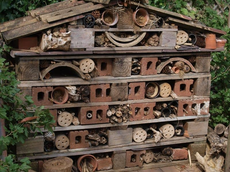 steps-to-consider-in-building-a-bug-hotel-3-roofing