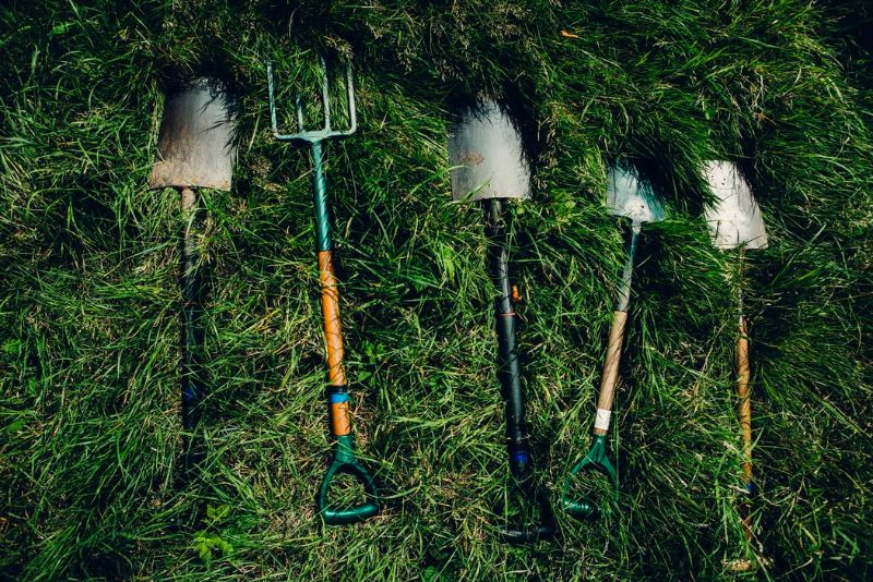 The tools and equipment you need for growing your moss garden.