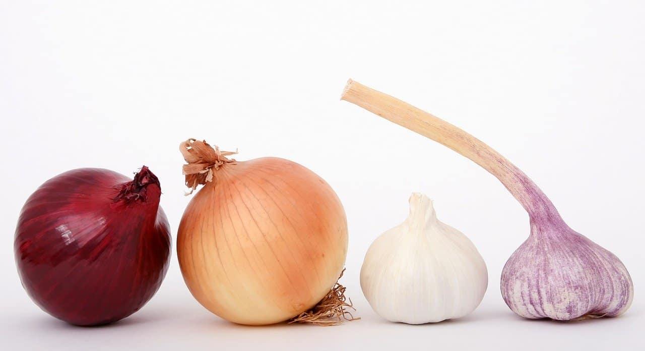 natural-remedies-garden-1-garlic-onions-pixabay