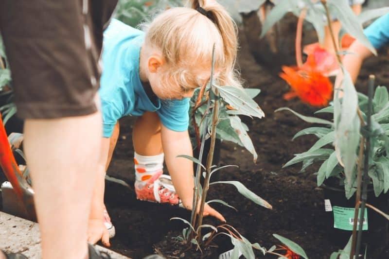 lockdown-basic-gardening-chores-6-lockdown-gardening-with-your-children-unsplash