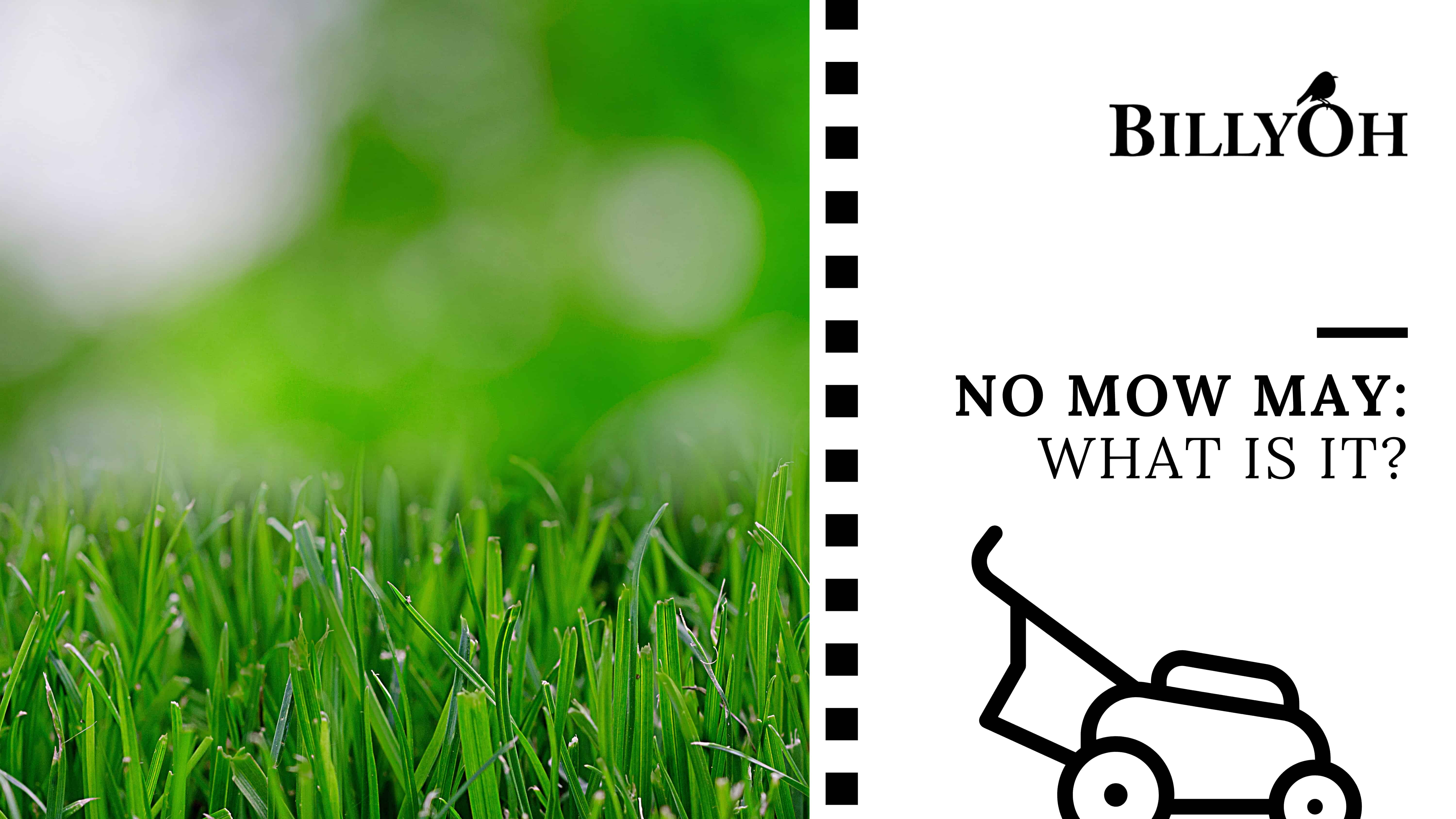 No Mow May with cartoon lawnmower on black and white film strip banner with lawn grass next to it