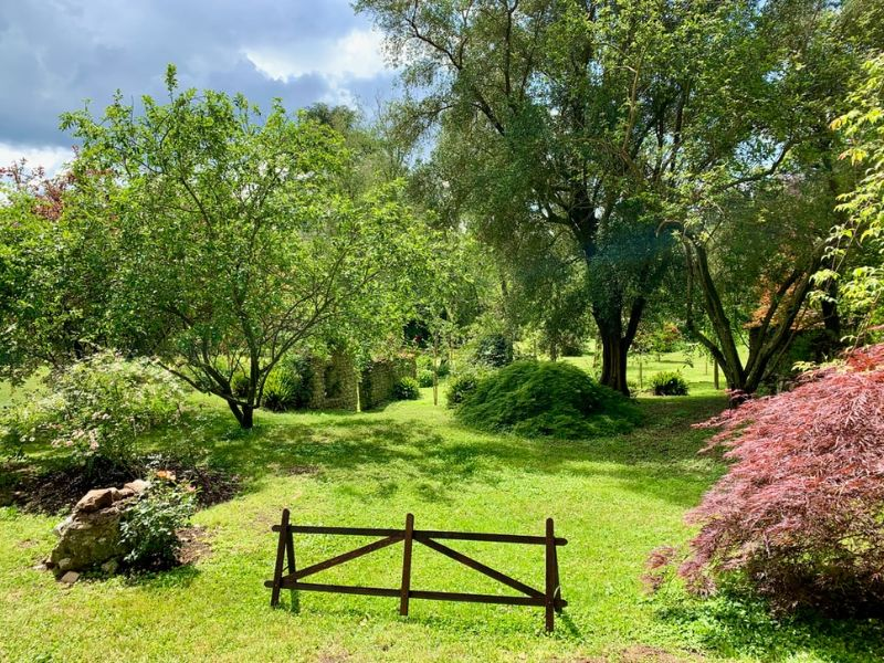 small horse jump in a green garden surrounded by trees
