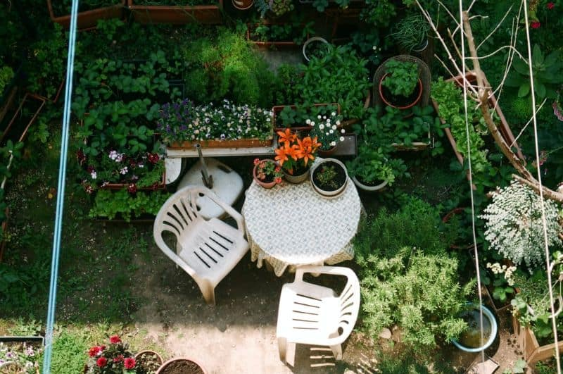 Garden with white plastic chairs and a round table surrounded by plants