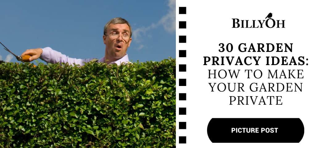 BillyOh 30 Garden Privacy Ideas with nosy neighbour cutting the hedge
