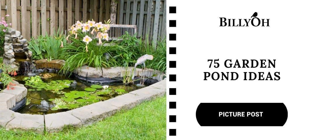BillyOh 75 Garden Pond Ideas
