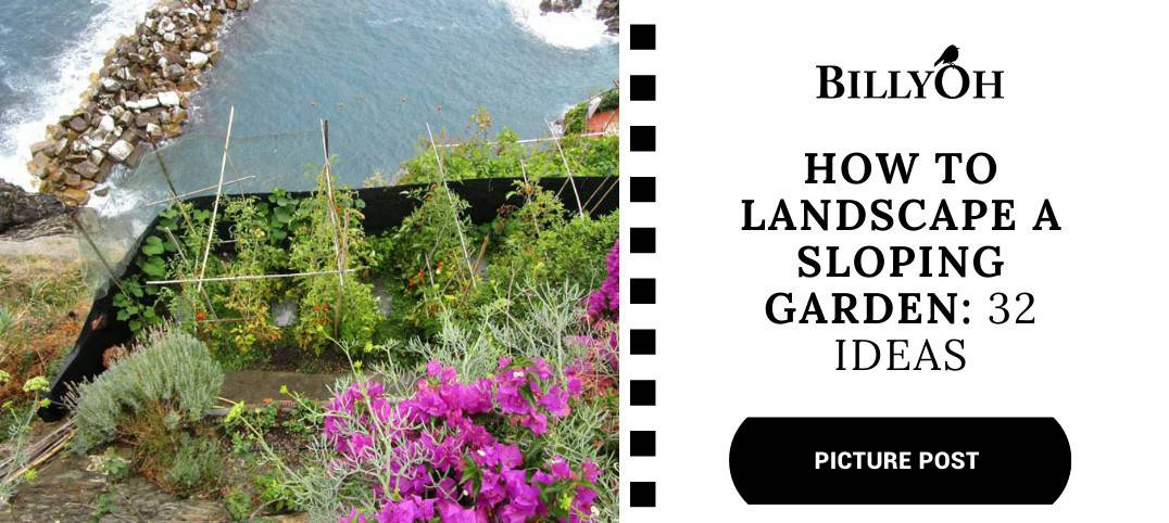 BillyOh How to Landscape a sloping garden nat geo