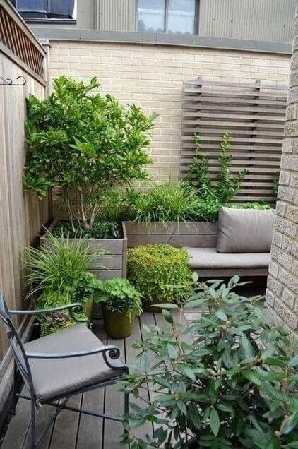 A tiny space with some plants and a little trellis