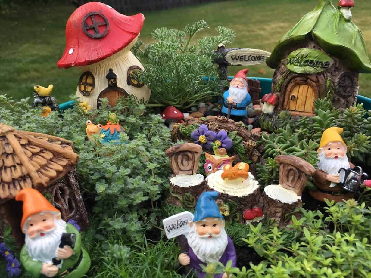 Little garden village for the gnomes