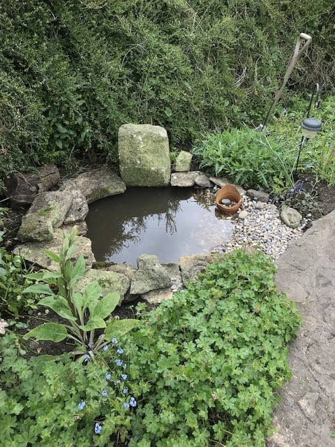 A wildlife pond made from natural materials