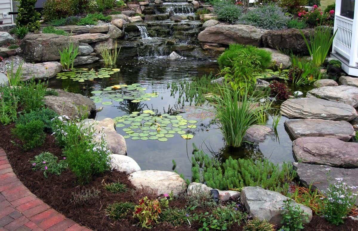 A mountain lake koi pond design