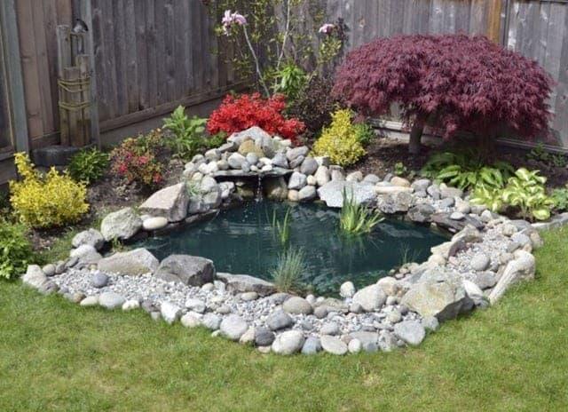A cosy corner pond