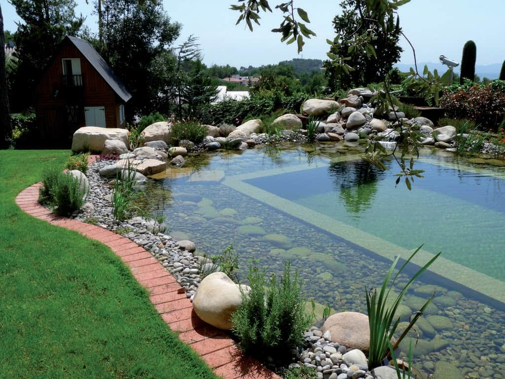 A pond that intended for bathing, whereas the other part is for water purification