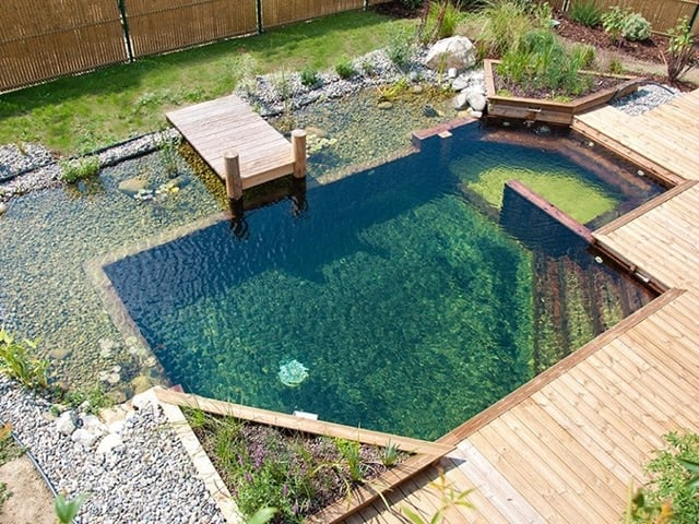 A pond that doubles as a swimming pool