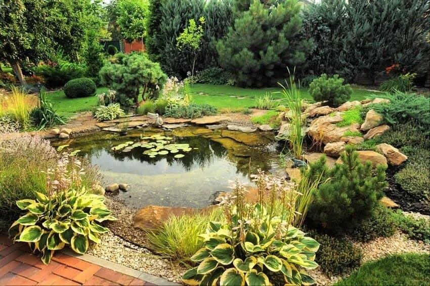 A garden pond in a peaceful environment