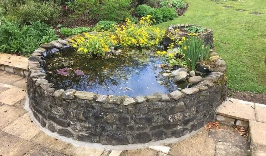 A pond that resembles a well